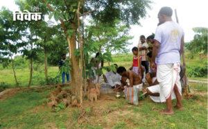 पर्यावरण और वनवासी: सहजीवन की मिसाल