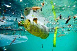 क्या वर्तमान समय में प्लास्टिक के बिना जीवन संभव है?