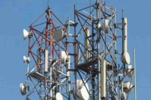 मोबाइल टावर ले रहा पक्षियों की बलि