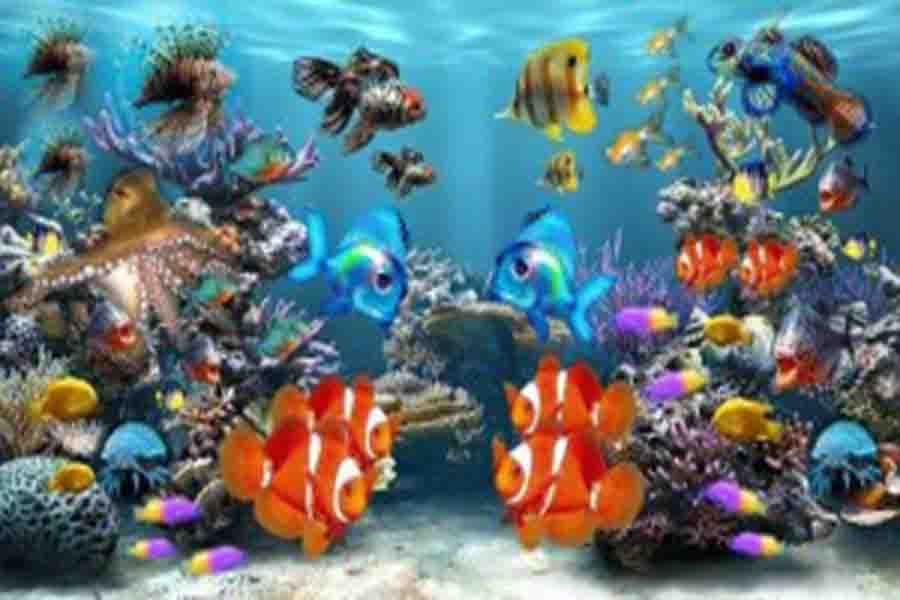मछलीघर