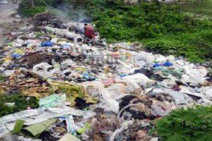 प्लास्टिक प्रदूषण पर हो संगठित प्रहार