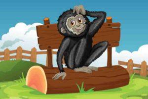 शरारती बंदर