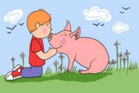 सुअर और लड़के