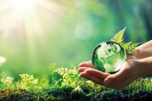 पर्यावरण सरंक्षण और भारतीय मूल्य
