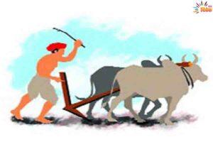मारेय नाम का किसान