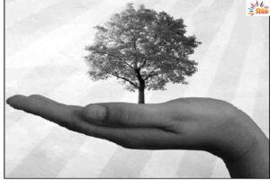 पेड -पौधों के साथ बानाईये भावनात्मक रिश्ते