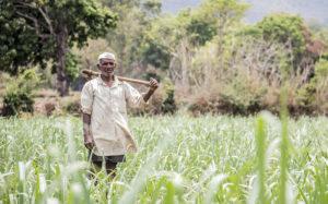 किसान बिल विरोध के बीच सरकार ने जारी की नई MSP