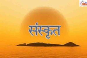 संस्कृत शब्दों की विश्व-मात्रा