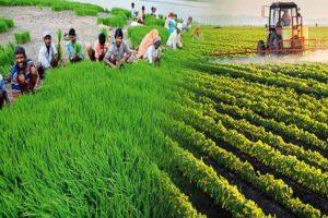 'शून्य' से ही पूर्ण होगा खेती का भविष्य