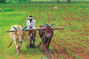 किसानों के भविष्य की चिंता करती सरकार