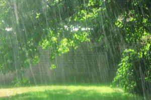 अमृत रस है बारिश